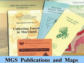 MGS publication examples